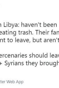 К турецким наемникам в Ливии у Анкары неравнозначный подход