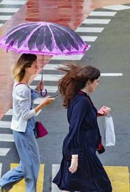 Синоптик Вильфанд предупредил о дождях в Москве с 6 июня