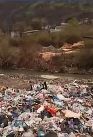 Украинские Карпаты утопают в мусоре. Проблема загрязнения международного уровня