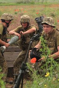 Экс-помощник министра обороны Украины Селиванов: Киев не сможет победить республики Донбасса военным путем