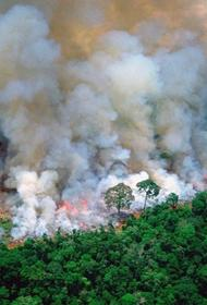 Как не допустить нового возгорания торфяников