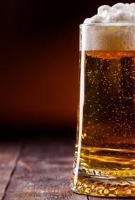 В Афганистане у немецких военных образовался избыток пива
