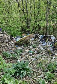 В свалку мусора превратился поселок в Хабаровском крае