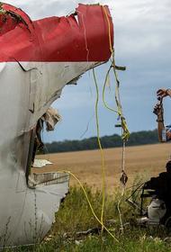 Суд по делу о крушении рейса МН17 не принял свидетельские показания жителей ДНР