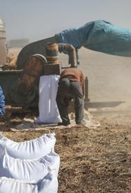 В Европарламенте заинтересовались эффективностью финансовой помощи Сирии в связи с ситуацией в стране