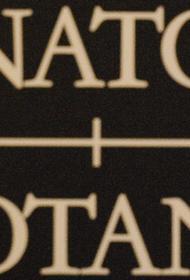 Спецпредставитель генсека НАТО Аппатурай напомнил Украине, что к членству в альянсе «нет короткого пути»