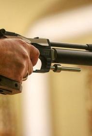 Общественный деятель Курдесов предложил ограничить онлайн-торговлю пневматическими пистолетами