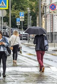Синоптик Вильфанд заявил, что в Москве наблюдается обычная летняя погода