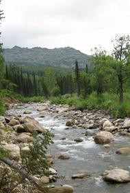 В Тюменской области построят мост через реку Барсук