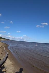 Россия и Эстония решили очистить Чудское озеро от загрязняющих веществ