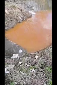 ПАУ «Сухой» в течение трех лет сливает неочищенные отходы в реку Каменку