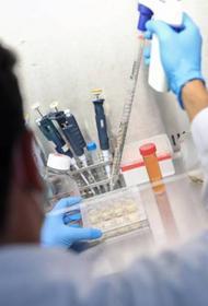 Индийский штамм коронавируса «ломает» даже вакцинированных