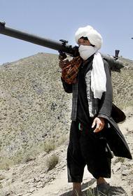 Пользуясь исходом американских войск из Афганистана, талибы захватили 33 района