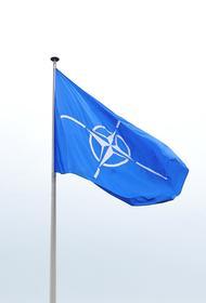 Политолог Мезюхо прокомментировал условия альянса для вступления Украины в НАТО