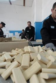 Бывшим заключенным помогут открыть свое дело в Хабаровском крае