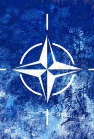 Украина приостанавливает программу вступления в НАТО
