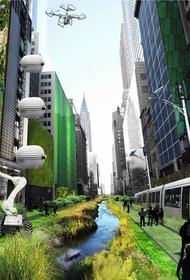 Экологическая стратегия Амстердама 2040 приобрела свои очертания