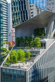 Город будущего: единая сеть зданий