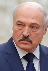 В Германии не исключают, что Лукашенко в ответ на санкции остановит транзит углеводородов в Европу