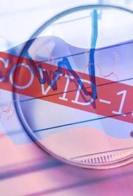 В Великобритании опубликовали новые данные о количестве повторных заражений COVID-19 у людей с антителами