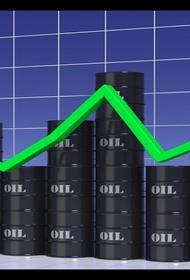 Жители стран ОПЕК+ очень довольны подорожанием нефти