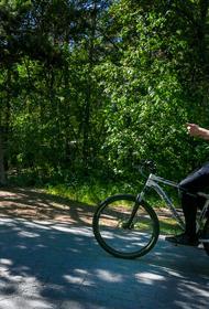 Челябинцы стали чаще арендовать велосипеды