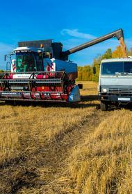 В Челябинской области пройдет первая сельскохозяйственная микроперепись