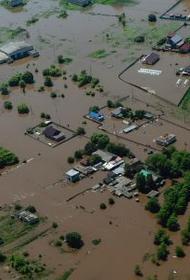 На Амуре развивается мощный паводок, в ближайшие сутки вода доберется до самых густонаселенных районов Дальнего Востока
