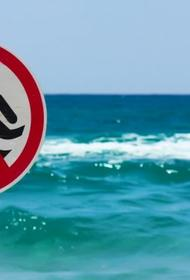 Роспотребнадзор пока не разрешает купаться в море у Ялты и неизвестно сколько ещё продлится запрет