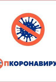 Жителей Челябинской области предупредили о сайтах-клонах официального портала стопкоронавирус.рф