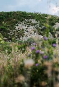 Мусорный полигон около Геленджика отравляет подземные воды