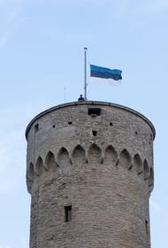 Эстонию не пустили в Арктический совет
