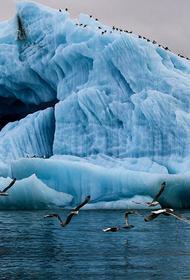 Горы пластикового мусора нашли в Арктике участники экспедиции «Арктический плавучий университет – 2021»