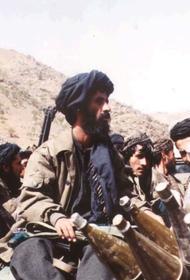 Зась: Таджикистану необходимо оказать помощь в обороне афганской границы