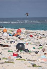 Пластиковый мусор заносят  течения на необитаемый остров в Тихом океане