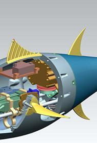 Ученые будут спасать популяцию рыб с помощью робототехники