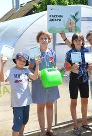 Волонтеры ВгАЗа подарили детям Дубовской школы-интерната теплицу