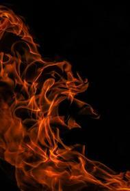 В Сестрорецке пожарные борются с огнем в цеху по деревообработке, вспыхнувшем утром 5 июля