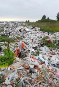 Дрозденко: Жители Ленобласти будут получать награду за информацию об устроителях незаконных свалок