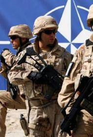 Литовские военные украли у солдат НАТО более 14 тысяч сухих пайков