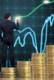 Как не попасть в руки мошенникам на просторах инвестиционного рынка