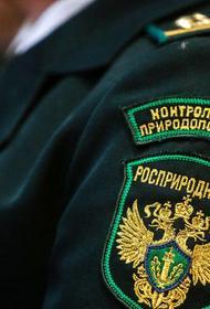 Росприроднадзор проверит состояние рек Волга, Обь, Иртыш, Дон, Ангара