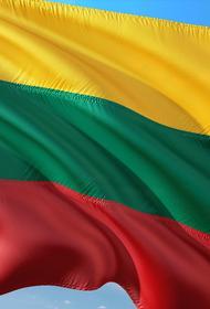 Посол Литвы в ФРГ Мисюлис заявил о намерении страны выделить 42 млн евро на укрепление границы с Белоруссией