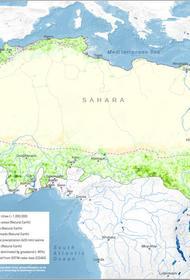 21 африканское государство объединились, чтобы построить стену из деревьев и внести вклад в борьбу с климатическим кризисом