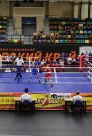 Хабаровские боксеры завоевали семь медалей чемпионата ДФО