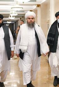 Коротченко: нам надо не с талибами договариваться, а срочно укреплять Таджикистан