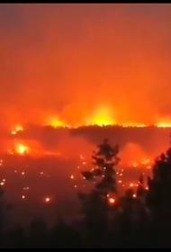 Более 550 природных пожаров зарегистрировано на территории России, сообщили в МЧС РФ