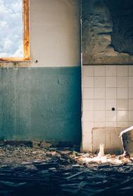 В Ленобласти могут уволить директора школы из-за его отказа принимать некачественный ремонт здания