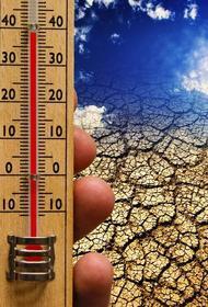 Ученый предупредил о возможном повышении средней температуры Земли на пять градусов
