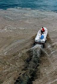 В Мраморном море обнаружено угрожающее экосистеме пятно опасной морской слизи